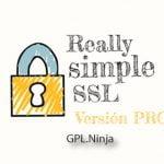 Descargar plugin Really Simple SSL Pro