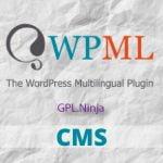 Descargar WPML plugin