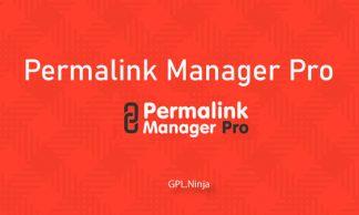 Plugin Permalink Manager pro