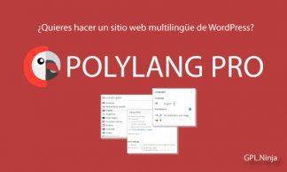 Plugin Polylang Pro