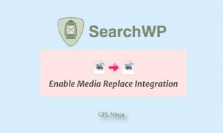 Plugin SearchWP enalble media replace integration