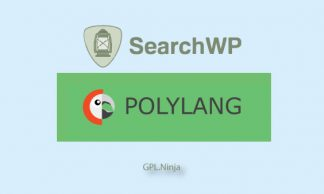 Plugin SearchWP polylang