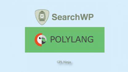 Plugin SearchWP polylang