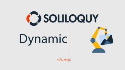 Plugin soliloquy dynamic