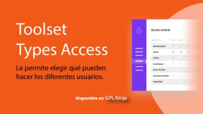 Toolset Types Access