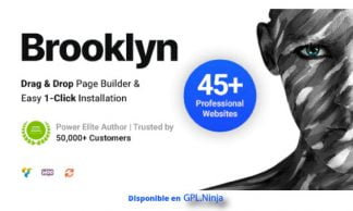 Brooklyn Creative Multipurpose Responsive WordPress Theme
