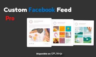 Custom Facebook Feed Pro By Smash Balloon