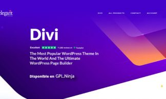 Divi Tema Wordpress