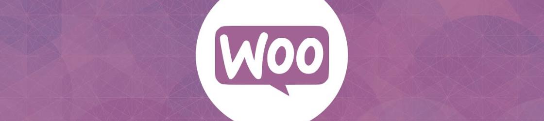 Plugins premium de WooCommerce