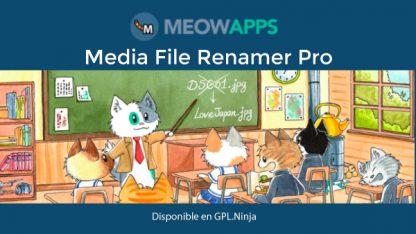 Media File Renamer Pro